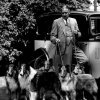 1937_collies_colonelwilberforce_del